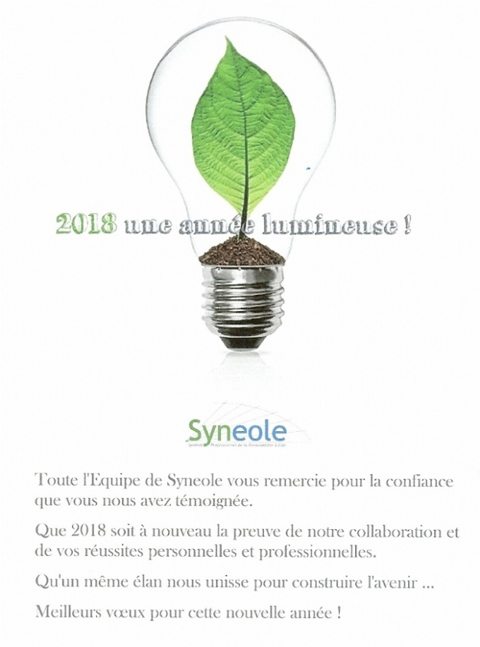 Voeux_Syneole_2018